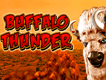 Игровой аппарат Buffalo Thunder
