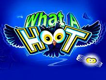 Онлайн автомат What A Hoot