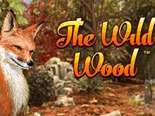 Игровой слот The Wild Wood
